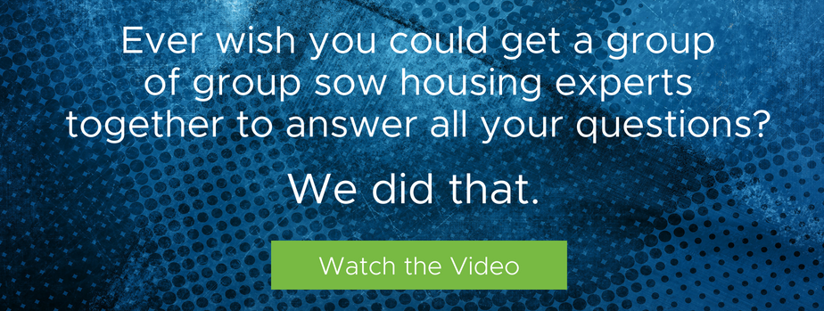 Ever wish you could get a group of group sow housing experts together to answer all your questions? We did that. Watch the video.