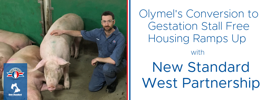 New Standard Proud to Partner with OlySky on their Conversion to GSF