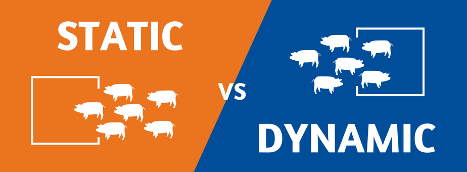 Static vs Dynamic (3).png