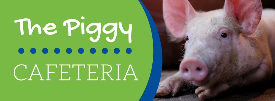 The Piggy Cafeteria - New Standard Group