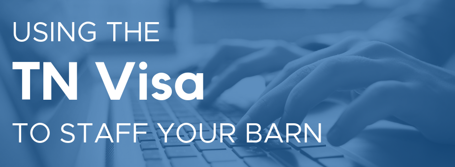 Using the TN Visa to Staff Your Barn