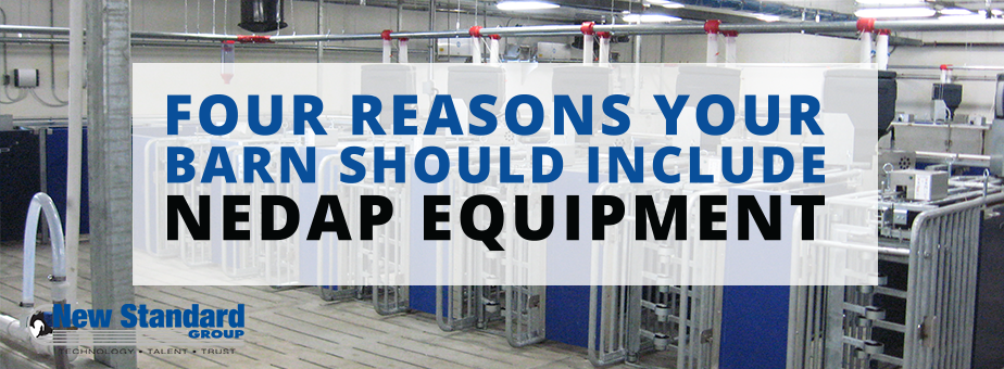 New Standard designs and equips your hog barn with Nedap equipment