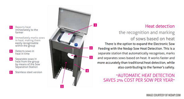 Nedap Sow Heat Detection - New Standard Group