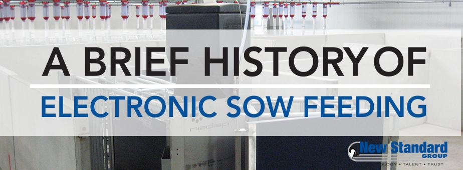 history of nedap electronic sow feeding