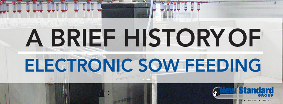 history of nedap electronic sow feeding