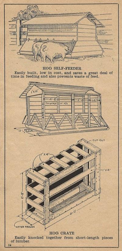 old-hog-feeder
