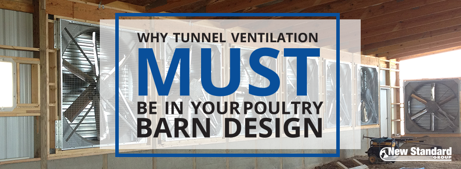 tunnel ventilation in poultry barn design